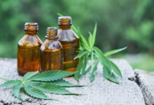 Photo of What Are Some CBD Tincture Uses?